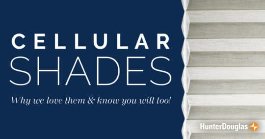 Cellular Shades Are A Great Mix of Function and Style