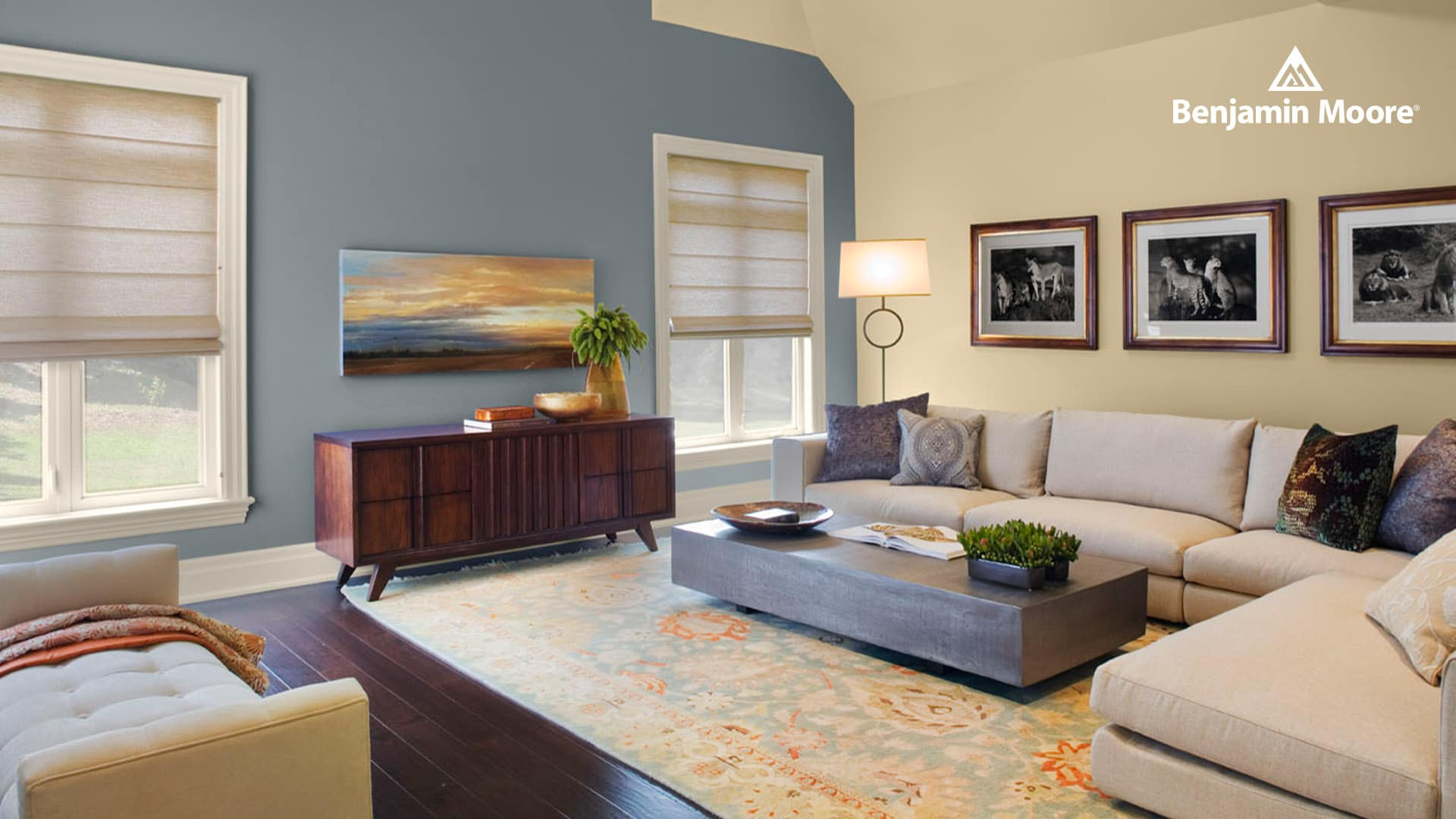 Benjamin Moore - Janovic Feature Wall in Living Room
