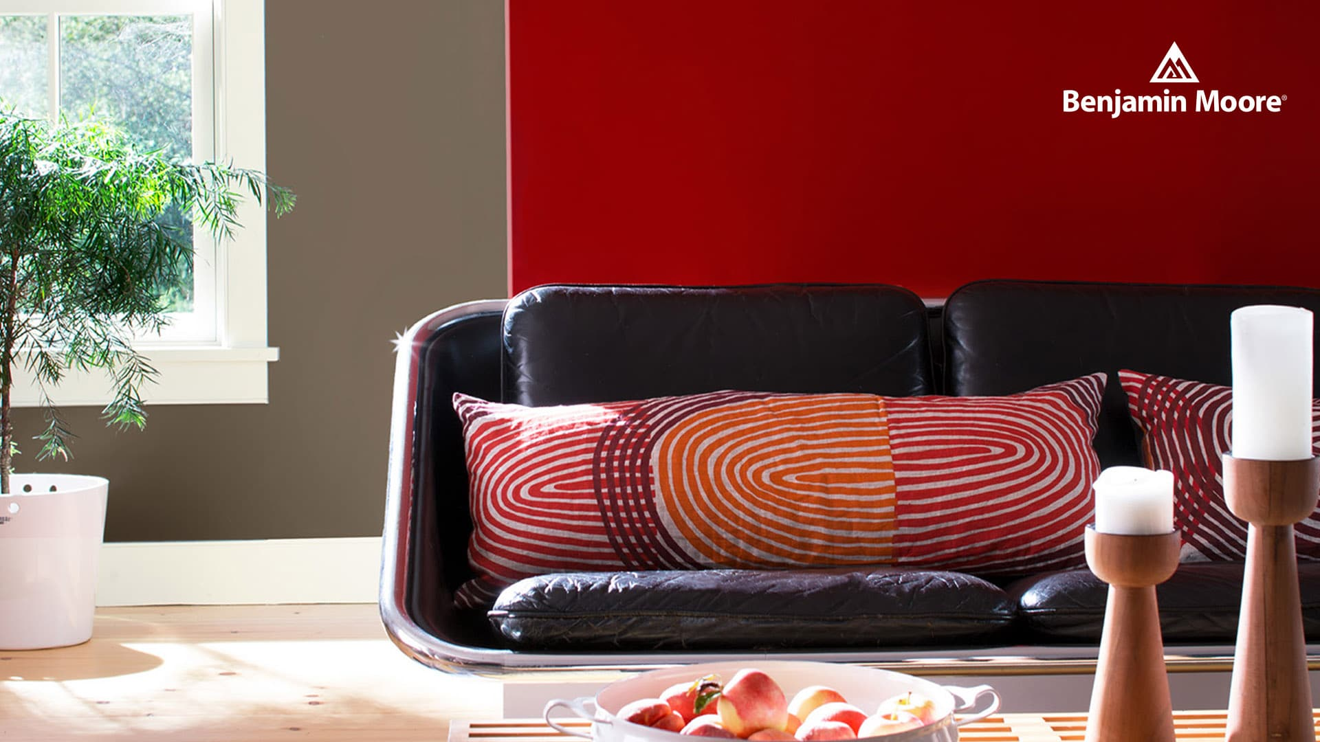 Janovic - Benjamin Moore - Bold Red Feature Wall in Living Room
