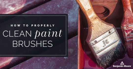 How to Clean Paint Brushes