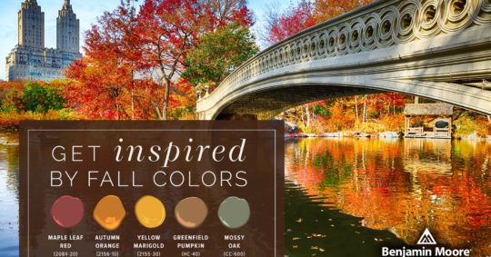 Get Inspired by Fall Color Palettes